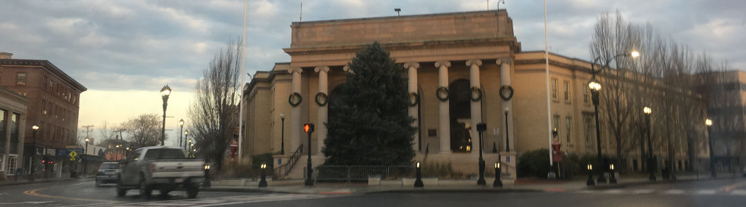 Framingham Holiday Tree