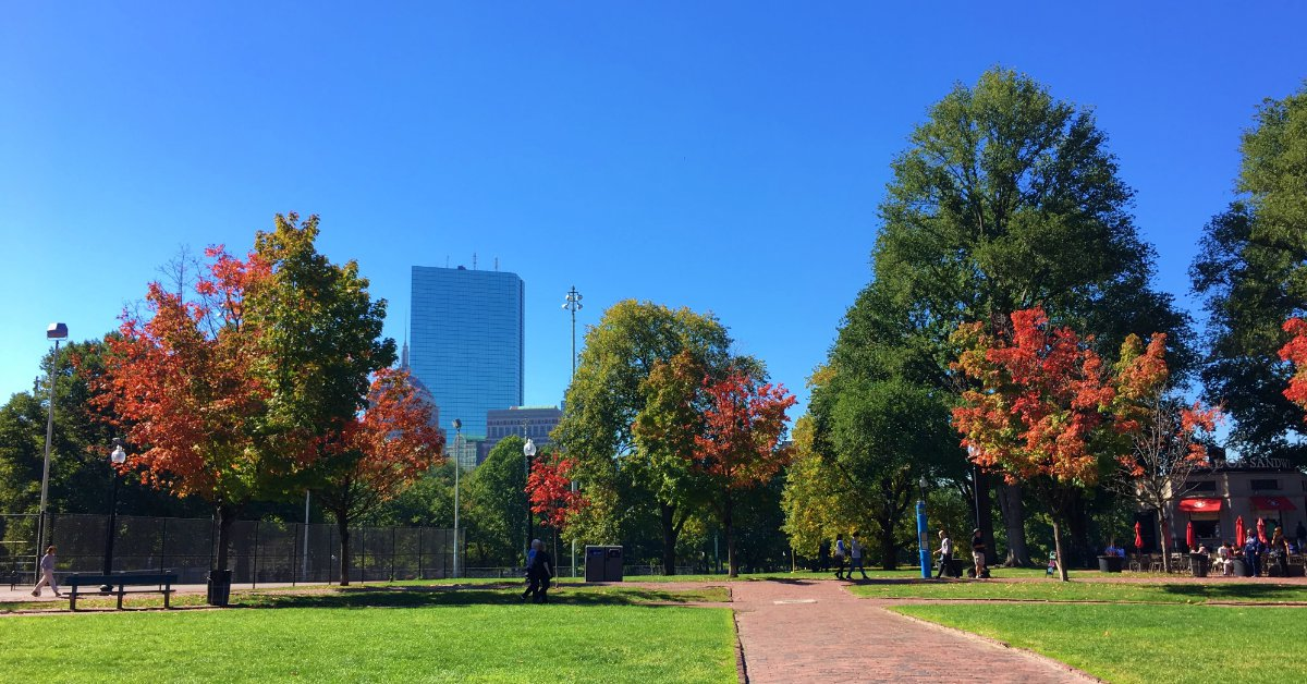 Boston Fall Opportunity